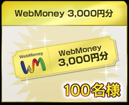 WebMoney3,000円分