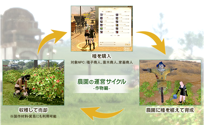 農園の運営サイクル