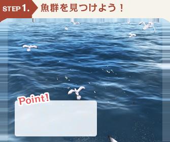 STEP1 魚群を見つけよう!