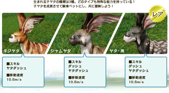 生まれる子ヤタの種類は3種。どのタイプも特殊な能力を持っている!子ヤタを成長させて騎乗ペットにし、共に冒険しよう!