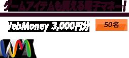 WebMoney 3,000円分