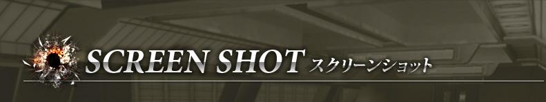 SCREEN SHOT スクリーンショット