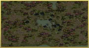 静寂の沼の画像